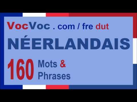 Apprendre le neerlandais 160 mots et phrases