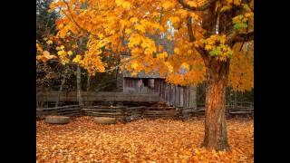 Autumn Comes Around by Andy Partridge