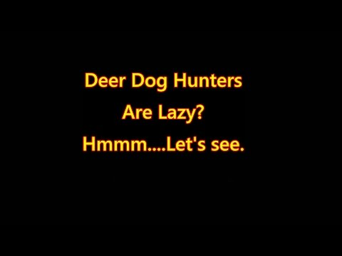 Deer Dog Hunters Are Lazy?