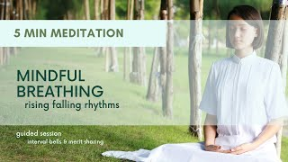 Mindfulness of Breathing (Rising Falling) 5 min
