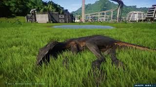 Indoraptor vs Blue Breakout & Fight - Jurassic World Evolution Dinosaurs Fighting