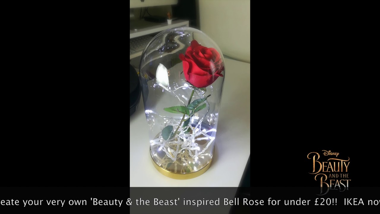 Make Your Own Beauty The Beast Style Bell Rose Jar For Under 20 At Ikea