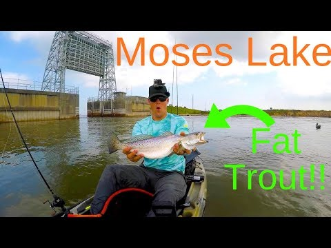 Fishing Is A Grind! Kayak Fishing 3 Locations In One Day To Get A BIG Speckled Trout