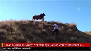 """Önder Kaçç Önder"" Kurban Bayramı 2017"