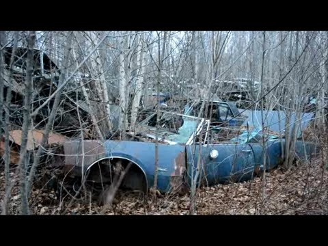 OLD JUNK CARS IN QUEBEC SALVAGE YARD