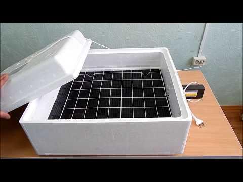 Инкубатор для яиц автоматический
