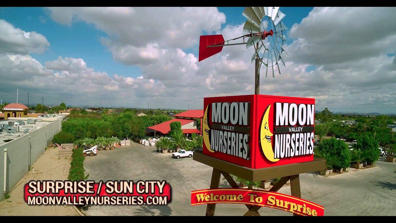 Moon Valley Nursery Surprise Sun City