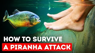 Only Way to Escape When Piranhas Surround You