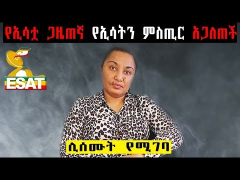 Interview With Reeyot Alemu