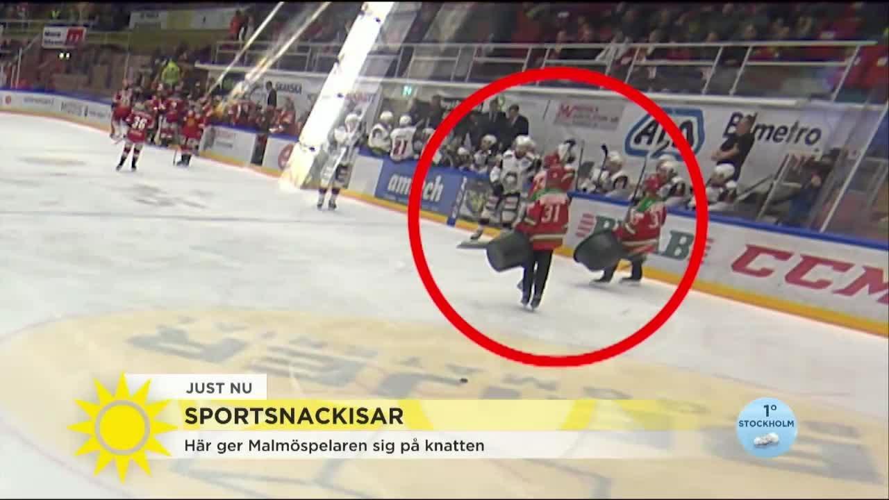 Harerar Hockey Spelaren Den  Ariga Isskraparen Nyhetsmorgon
