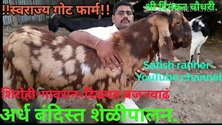 Sheli palan success story. दिनकर चौधरी यांचं शेळीपालन .with satish ranher