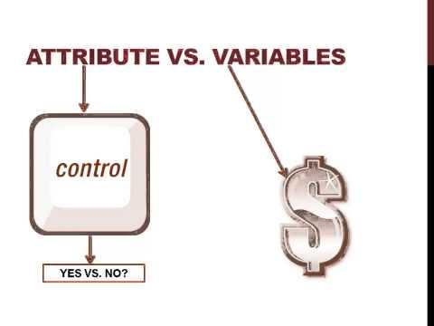Attribute vs Variables in Auditing