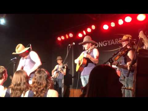 Macho Moisturiser - The Pigs Live at Tamworth Country Music Festival 2016!