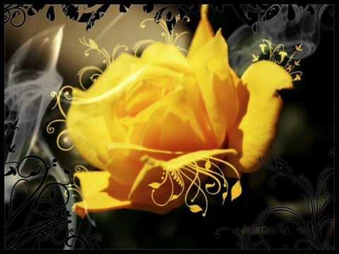 Alen Bauer & Lukass Corte-Sunshine In Your Heart (Lukass Corte Dream Chillout Mix) mp3