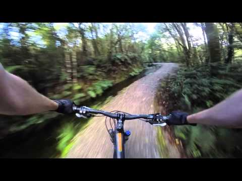 Mountain Biking West Coast Wilderness Trail, New Zealand