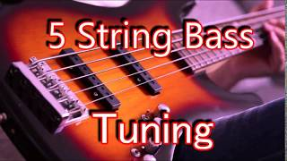 5 string bass tuner  b-e-a-d-g   (hd)