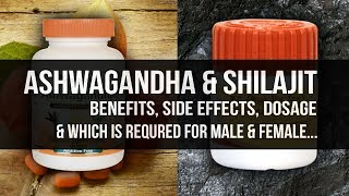 MUSCLE BUILDERS ASHWAGANDHA & SHILAJIT | BENEFITS, SIDE EFFECTS, TIMINGS & DOSAGE