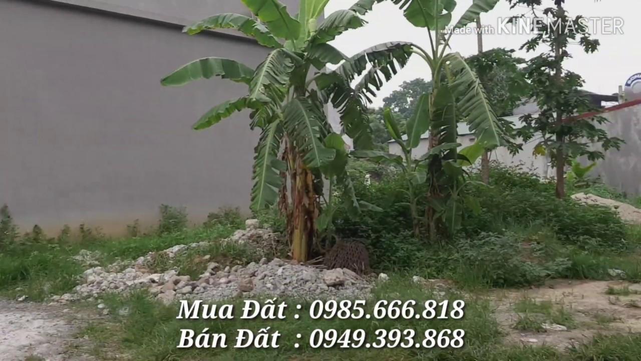 Bán Đất – Ngõ 16 – Nguyễn Tất Thành – Khai Quang – Vĩnh Yên