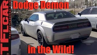 Is this the 2018 Dodge Challenger Demon Prototype Spied in the Wild?