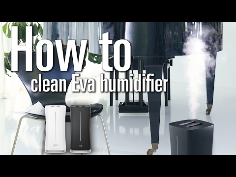 How to clean Eva humidifier