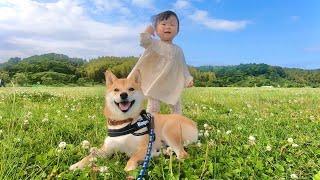 そうだ、柴犬と1歳娘を連れて公園に行こう