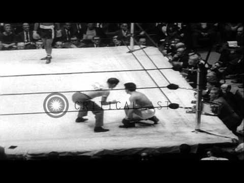 Vince Shomo defeats Frank Colaluca and Peter Toro defeats James Hogan at the Gold...HD Stock Footage