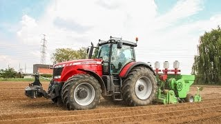 Massey Ferguson 8690 Dyna VT aardappelen planten 2014 - Maroy uit Avelgem