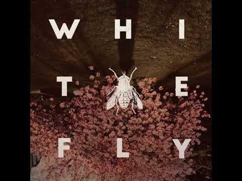 The White Fly - Aeromexico (2021) (New Full Album)