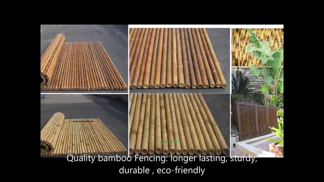 6 1 8 Fencing Bamboo Backyard Privacy Fence Bamboo Rolls