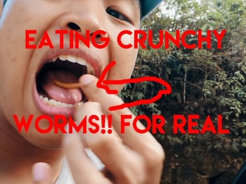 Weird Stuff: Eating Worms in Bohol! (Crunchy AF) NOT CLICKBAIT!!