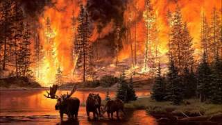 płoną gry płoną lasy cover