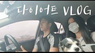 다이어트 VLOG - 여자친구 강아지랑 놀기, 쌀국수 …