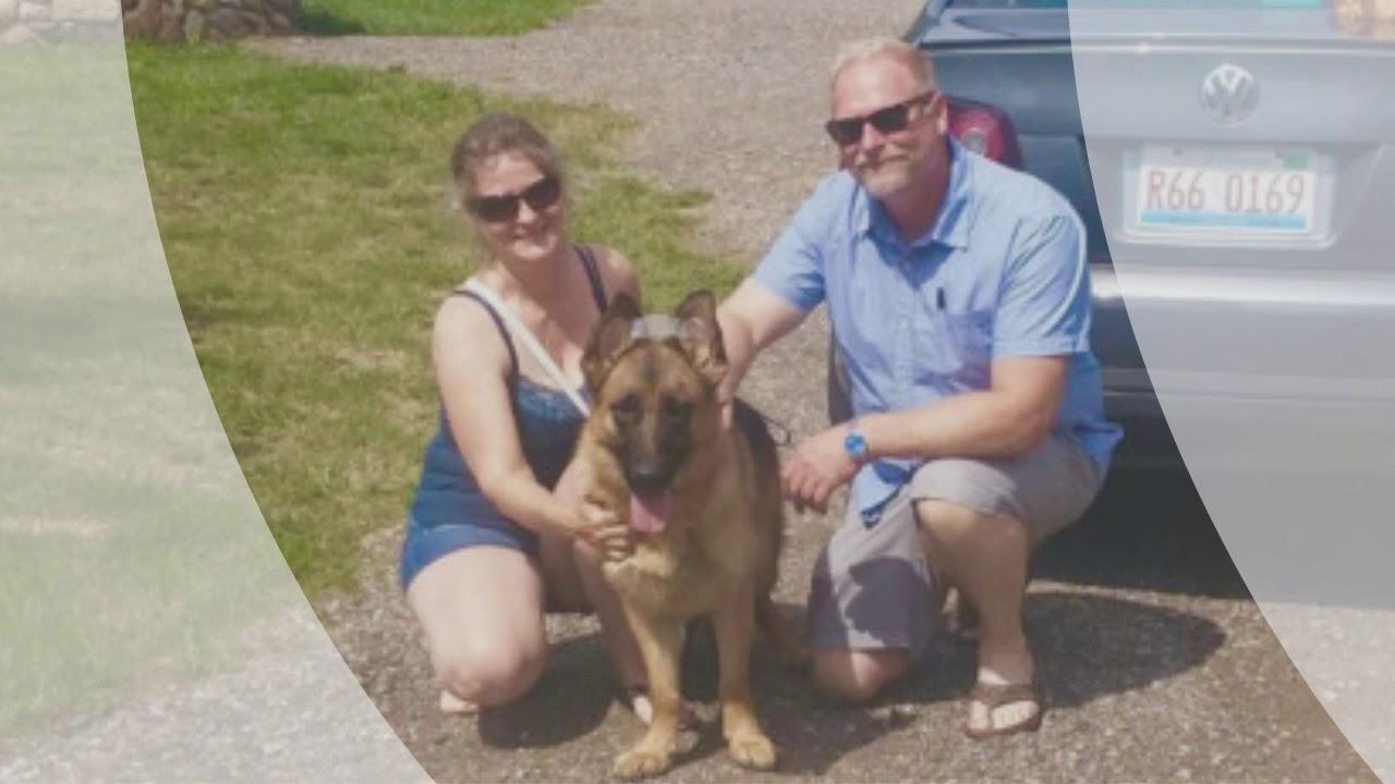 Find AKC IPO Schutzhund West German Shepherd Puppies For Sale? Top GSD  Breeders Chicago IL