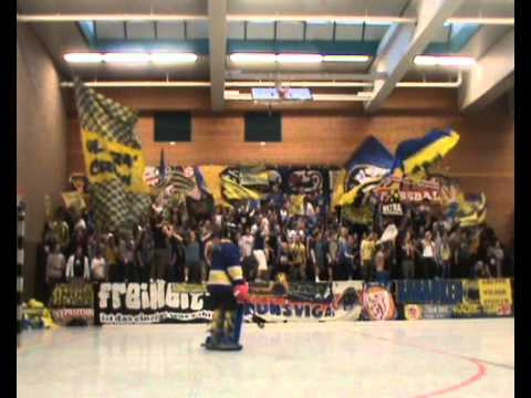 BTSV Eintracht Hallenhockey 2012 (CABS)