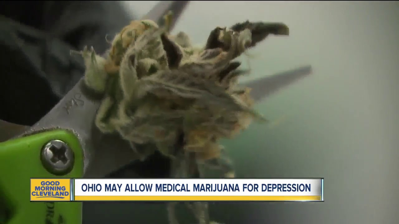 OHIO CONSIDERING MEDICAL MARIJUANA USE FOR DEPRESSION, 4 other conditions