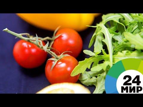 Экзотика на грядках: фермер из Армении выращивает средиземноморские травы и овощи - МИР 24