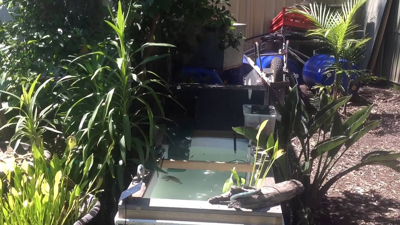 Outdoor turtle pond made from bath tub youtube for Outdoor pond tub