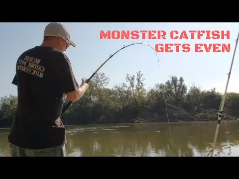 Monster Catfish Gets Even! - Great Miami River, Cincinnati, Ohio