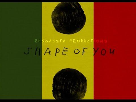 Ed Sheeran  Shape Of You reggae version  Reggaesta