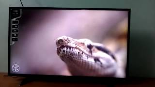 LG 43LH516A 43 Inch LED TV - Video - Audio quality test