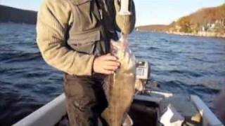 The Center For Animal Behavioral Research : Musky And Walleye Fishing On Greenwood Lake, N.j.