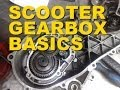 Scooter Gearbox and Basic Gear Theory