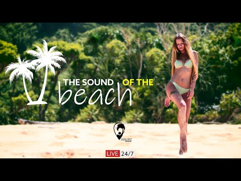 Chill Out Radio • 24/7 Live Radio   Best Chill House, Chillout Music, Summer Vibes, Beach, Gym