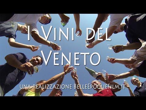 I Vini del Veneto