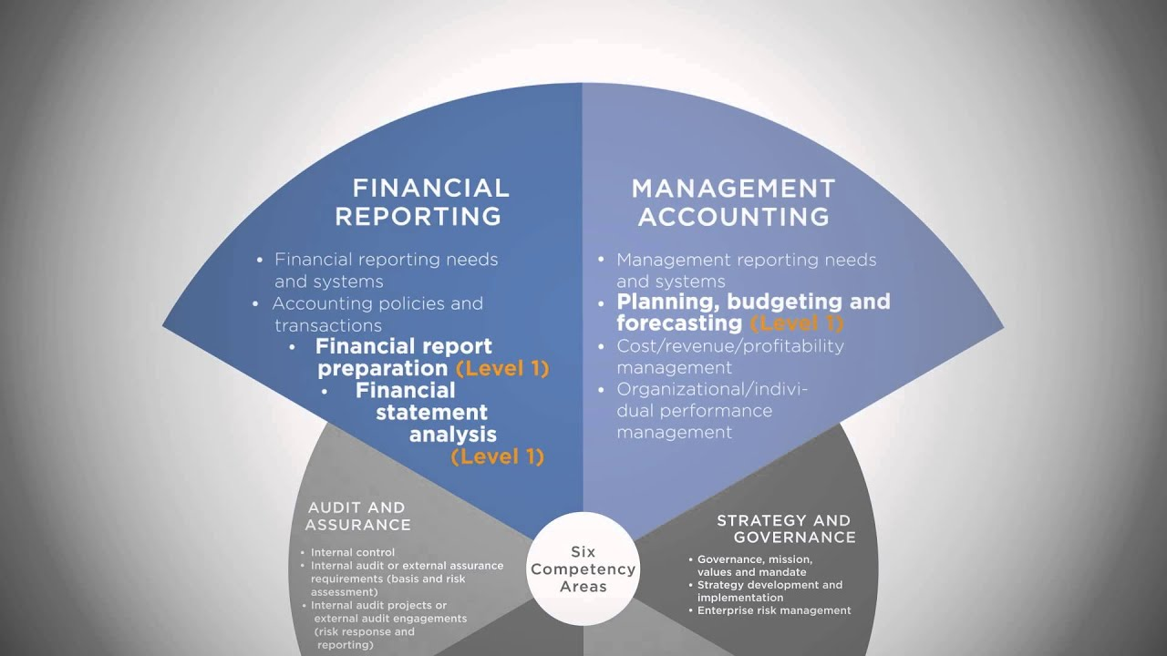 competency mapping for accounting professionals