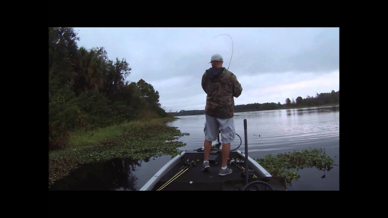 Hillsborough river tournament 12 15 13 video youtube for Hillsborough river fishing