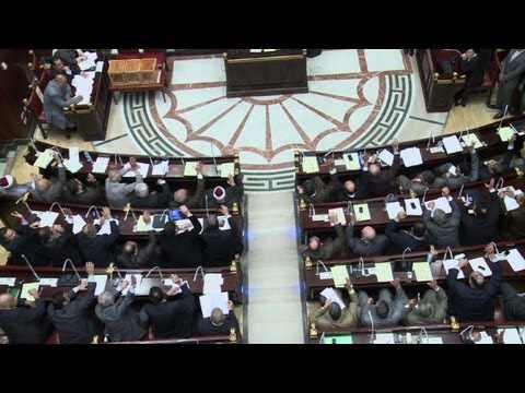 Egypt charter keeps sharia as 'main' source of law