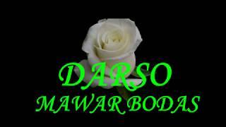 DARSO-Mawar bodas.. LIRIK!!! #popsunda#darso#legendsunda