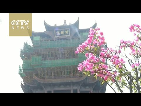 Flash mob celebrates Yellow Crane Tower renovation