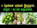 How To Earn 1 Lakh Money Per Month If You Have 10 Coconut Tree